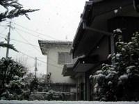 20041229yuki